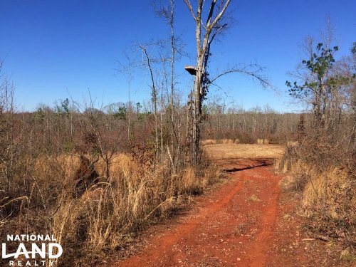 Griffin Recreational Land With Deve : Griffin : Spalding County : Georgia