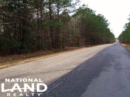 The Highway 21 Tract : Beatrice : Monroe County : Alabama