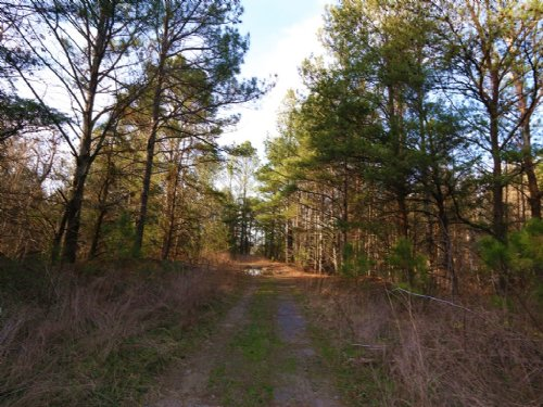 Recreationa 70 Acres & Ponds : Blountsville : Blount County : Alabama