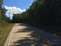 Wolf Stake Church Road Tract : West Union : Oconee County : South Carolina