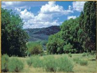 Northern Az Secluded Mountain Ranch