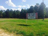 Cochran Highway - 170 Acres : Hawkinsville : Pulaski County : Georgia