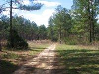 Big Woods 3 Miles To I-77
