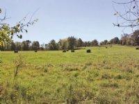 Versatile Kentucky Farm