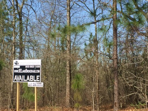 28.3 Acres Old Sandy Run Road : Gaston : Calhoun County : South Carolina