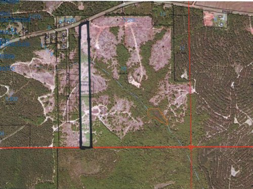 11.5 Ac With A Pond Site : Troy : Pike County : Alabama