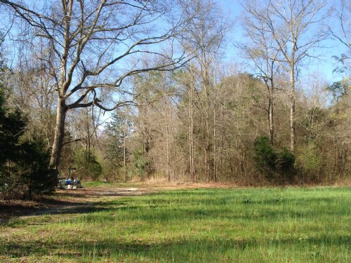 118 Ac Just South Of Troy : Brundidge : Pike County : Alabama