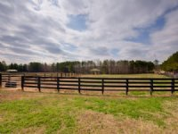 94.596 Acre Horse Farm : Newnan : Coweta County : Georgia