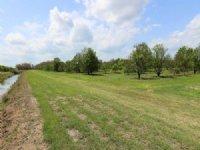 Holopaw Farm Land