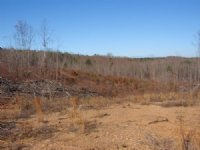 42 Ac Of Recreational / Residential