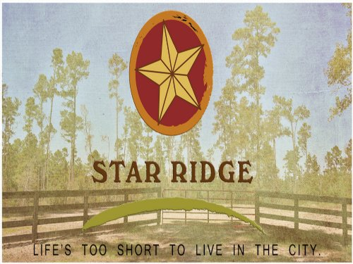 10.85 Acres Star Ridge : Livingston : Polk County : Texas