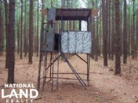 207 Acres Hunting And Timberland