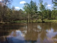 20.443 +/- Acres W/ 2 Small Ponds