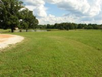 Scenic 43.5 Acres : Mathews : Montgomery County : Alabama