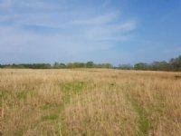 60.00 Acres Cattle Farm Land