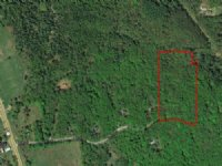 Wooded Lot With Lake Rights