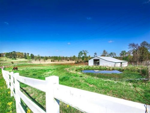 133+ Acre Ranch / 29833 : Leesburg : Camp County : Texas