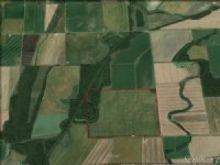 300 Acre Forked Slough Farm