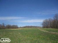 40 Acre Recreational Farm Or Build