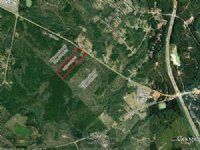 10 Heavily Wooded Acres : Irwinton : Wilkinson County : Georgia