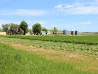 Vaughn Hay Farm