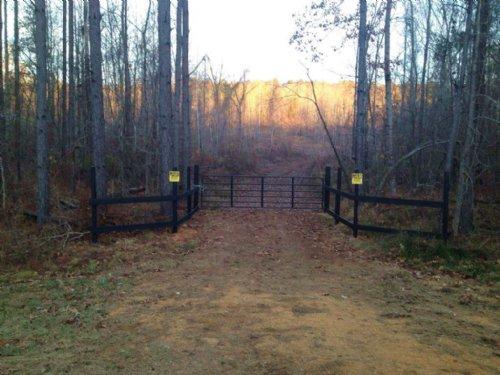 Dubina Property 66.3 : Greenville : Butler County : Alabama