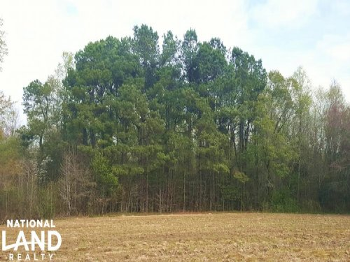 Private Agricultural Estate : Atkinson : Pender County : North Carolina