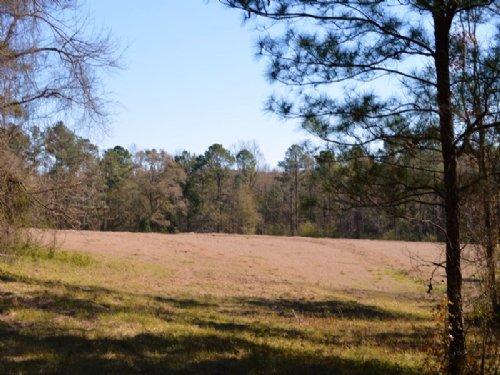 The Gilbert Tract : Quincy : Gadsden County : Florida