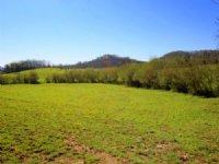 56 Acres Of Gently Rolling Farmland