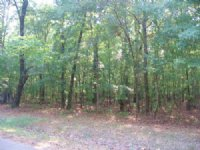 10 Ac Residential Country Lot