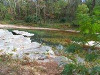 Vibrant Creek 120 Wooded Acreage