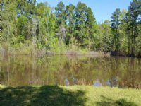 Beautiful Estate Lot With Pond