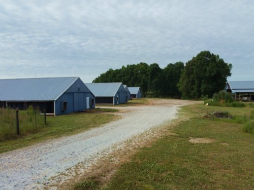 Six House Broiler Farm In Randolph : Graham : Randolph County : Alabama
