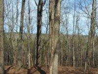576.00 Acres Fishing Land, Hunting