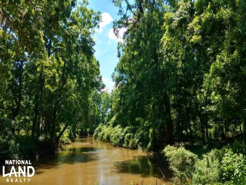 Tombigbee River Tract : Jackson : Clarke County : Alabama