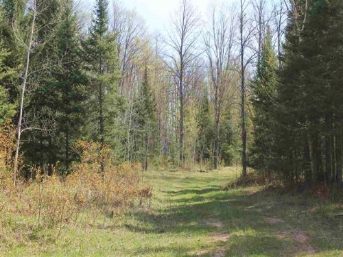 Off Fox Lake Rd. Mls# 1093372 : Sagola : Dickinson County : Michigan