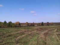 Land Bordering State Forest 16 Acre