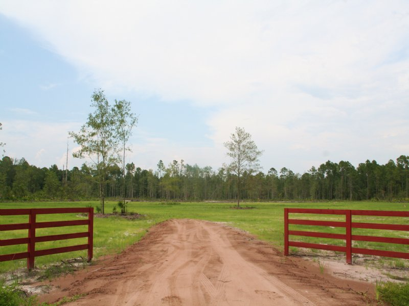 5.92 Acres- Randy Rd : Yulee : Nassau County : Florida