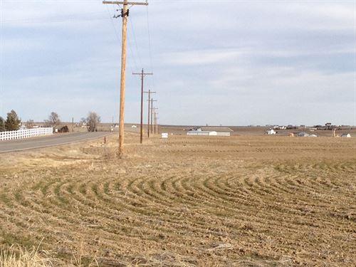 Brighton Farms : Brighton : Adams County : Colorado