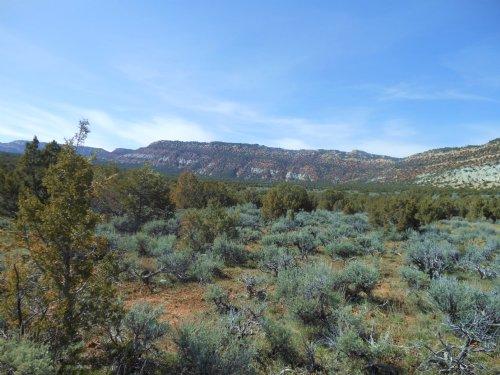Bingham Ranch : Dinosaur : Moffat County : Colorado