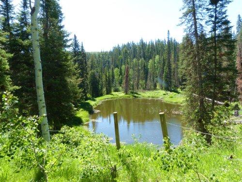 Elk Horn Lodge : Meeker : Rio Blanco County : Colorado