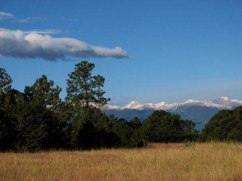 Mule Canyon Ranch & Holding : Westcliffe : Custer County : Colorado