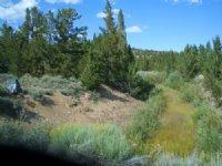Slate Creek Tract 14