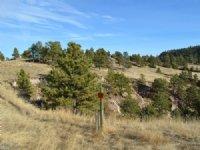 Pine Ridge Ranch Estates