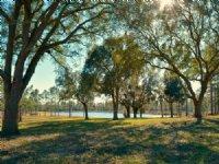 Hooking Bull Annex Of Honey Lake Pl