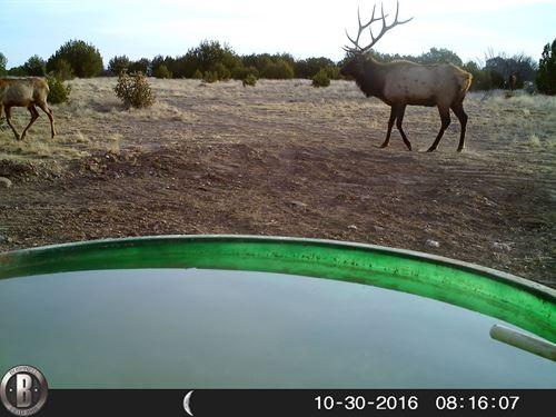 Homestead Ranch : La Junta : Las Animas County : Colorado