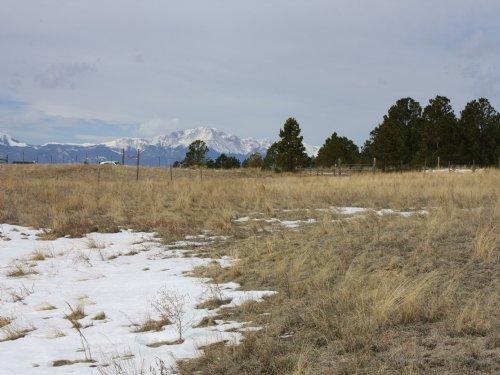 Black Forest Acreage : Colorado Springs : El Paso County : Colorado