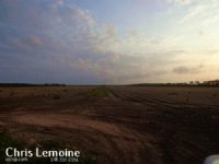 Sealed Bid Farmland Auction