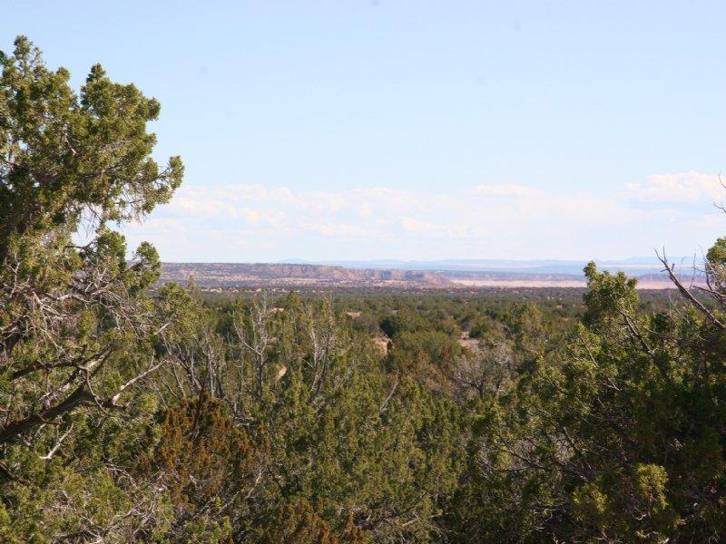 84 Acre Northern Az Mountain Ranch : St. Johns : Apache County : Arizona