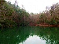 Mountainside Retreat W/ Pond